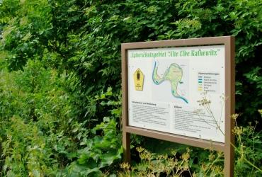 Infotafeln an der Alten Elbe bei Kathewitz