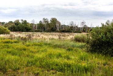 Naturschutzgebiet Prudel