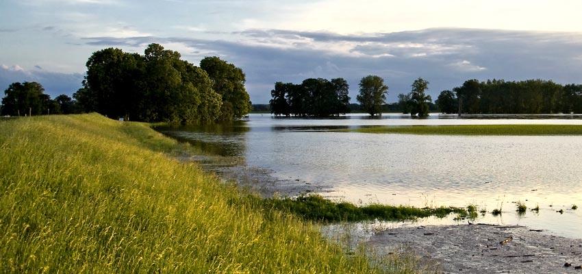 Eindämmung der Elbe