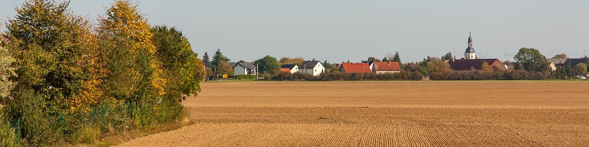Rosenfeld Panorama